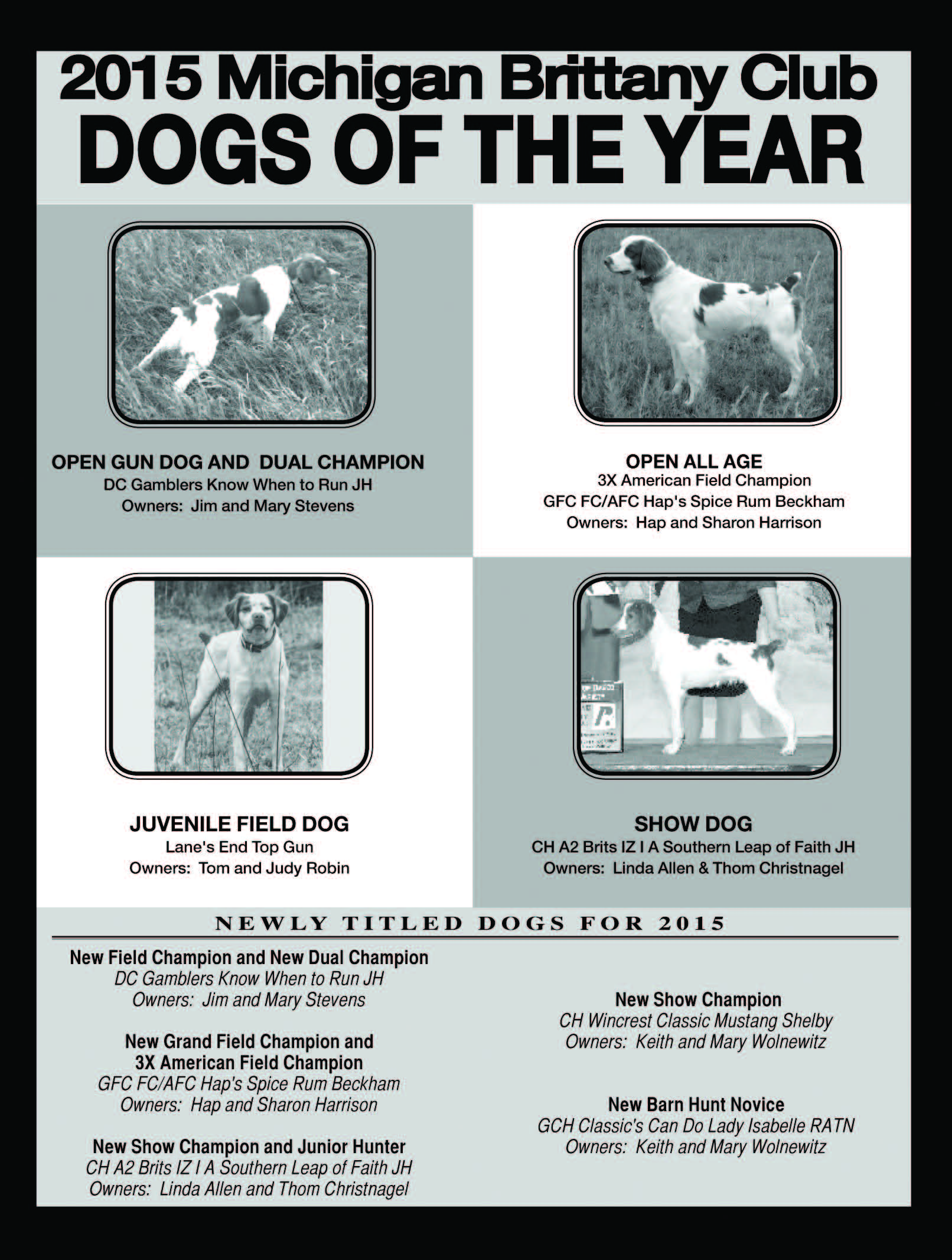 MBC Dogs of the Year 2015