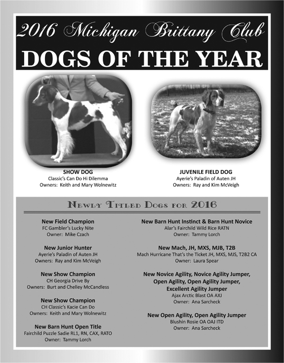 MBC Dogs of the Year 2016